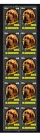 BLOODHOUND PUREBREED DOGS STRIP OF 10 MINT VIGNETTE STAMPS 3