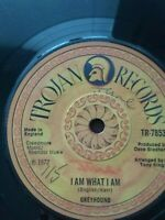 "Greyhound-I Am What I Am 7"" Vinyl Single 1972 UK COPY"
