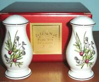 Lenox Etchings Salt & Pepper Shakers Set Made in USA Retail $100 New In Box