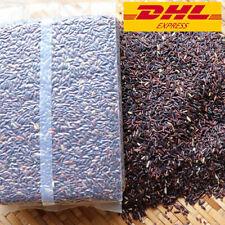 1KG.Thai Rice Berry Brown Seed Food Cooking 100% Organic Quality GAP New Crop