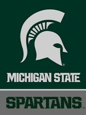 Michigan State University (Msu) Spartans 28 x 40 Banner Flag - ipg Sports