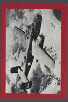 1945 Beehive Aeroplanes Pictures Group 4 Red Mats North American B-25 Photo