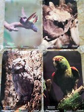 CHOOSE TWO - 11x17 Mexico Museum of Birds Posters - Parrot Eagle Owl Hummingbird