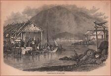 NEWFOUNDLAND GROCERY STORE, antique engraving, original 1877