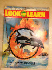 Children's January Weekly Magazines