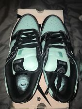 Nike sb Tiff any Dunk Low size 8 Brand New