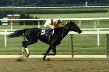 1975 Jacinto Vasquez RUFFIAN Belmont Park Coach Club Horse Racing 8x10 Photo