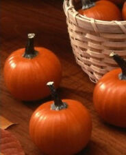 Pumpkin Seeds, Wee Bee Little, Mini Pumpkin, Heirloom Pumpkin Seed, Non-Gmo 30ct