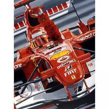 Michael Schumacher Farewell Lithograph