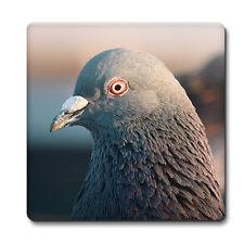 Pigeon Coaster - Bird watcher Racing Breeder Tea Coffee Mat Office Gift idea #9