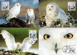 Greenland 1999 WWF snow owls birds Set OF 4 maxicards