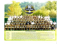 2012 PITTSBURGH STEELERS TEAM 8X10  PHOTO   FOOTBALL NFL