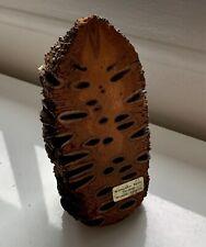 Vintage Retro  Hand Made Banksia Nut Decoration 15cm High