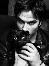 V8190 Ian Somerhalder Cute Handsome Pussy Portrait Actor BW WALL PRINT POSTER AU