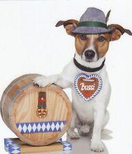 Pliante carte de luxe: Jack russel terrier Chico comme Bayer-Bavarian Dog