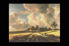 358099 Wheatfields Jacob Van Ruysdael A4 Photo Print