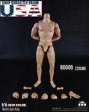 1/6 COOMODEL Standard Muscular Male Body BD009 For Hot Toys TTM18 TTM19 USA