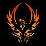 Phoenix Sport and Business Fashion