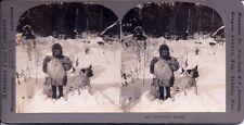 INNOCENCE ABROAD Girl w/Bulldog Stereoview Card by Keystone 1890s