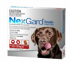 NexGard 47957 Flea and Tick Chewable Treatment for Dogs 25-50 kg - Pack of 6