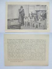 werbeblatt postkartengröße mehnert münchen rettungswerk bernhardiener