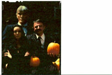 ADDAMS FAMILY HALLOWEEN TV SHOW ORIG VINTAGE COLOR 4X5 TRANSPARENCY STILL PHOTO