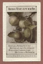 RP Apples, 1921 Stewart Walker  Myrtle Cottage  Hough Hill  Swannington   AH322