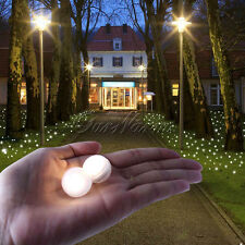 30 Warm White Glowing Fairy LED Berries Light for Wedding Party Home Vase Decor