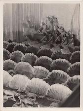 Photo originale  Folies Bergères cabaret Music-Hall danseuses nues plumes