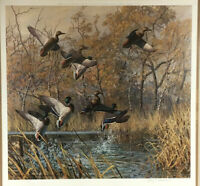 Limited EdItion Large Signed Numbered Harry Adamson Signed Wild Wings 1981