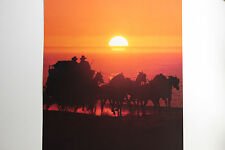 NEW RARE WELLS FARGO HORSES RUNNING POSTER WESTERN STAGECOACH BANK SUNSET OUTLAW