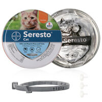 Bayer Seresto Flea and Tick Collar For Cat 8 Months Protection Flea Treatment