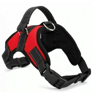 Dog Supplies Nylon Pet Dogs Harness Collar high quality pet products