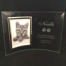 Personalised Engraved Glass Photo Frame - In Loving Memory Pet Memorial Cat
