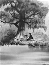 DISNEY Livre de la Jungle Photo de Presse Vintage Film Photography Argentique #6