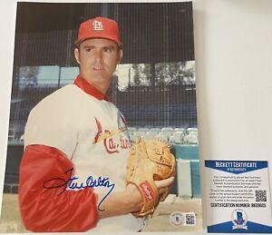 Steve Carlton Signed St Louis Cardinals 8x10 Photo Beckett BAS COA Autograph