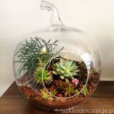 Clear Glass Apple shape Terrarium jar lantern planter tea light holder Handmade
