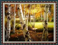 """Hand painted Oil painting original Art Landscape birch forest on canvas 30""""x40"""""""