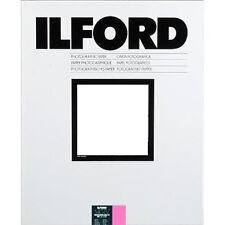 Fotopapier 1x100 ILFORD MG IV RC 1m 18x24