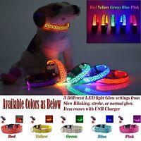 Blinking LED Night Light Flashing Glow Adjustable Pet Dog/Cat Collar,USB Charger