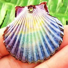 F37145 Natural Gold Plated Rainbow Spiral Seashell Pendant Bead 38x39x6mm