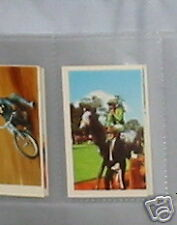 #18 Horse Racing - Collector Sports card
