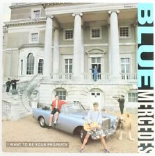 Blue Mercedes, I Want To Be Your Property  Vinyl Record *USED*
