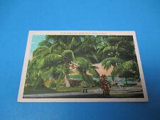 North Bay Shore Drive Miami Fl 1930 Postmarked Vintage Color Postcard PC28