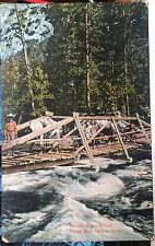 KINGS RIVER CANYON, CALIFORNIA, Post Card 1905-15 HORSES on Cedar Grove Bridge,