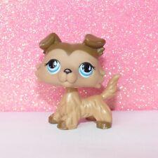 Authentic LPS 893 COLLEY COLLIE littlest petshop PET SHOP dog chien hasbro