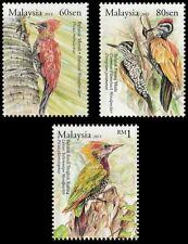 Woodpecker Malaysia 2013 Bird Nature Wildlife Forest Animal (stamp) MNH
