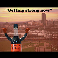 Sheffield Greetings Card Hendos Rocky 'Getting Strong Now' BIRTHDAY