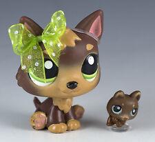 Littlest Pet Shop German Shepherd #2137 Brown w/Green Eyes + One Tiny Teensies