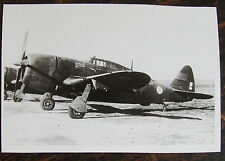AVIATION, PHOTO AVION DAUPHINE (P-47??)